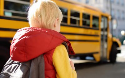 Deaths Prompt Calls for More Stringent School Bus Traffic Laws
